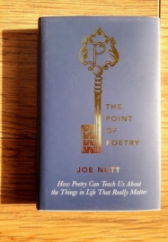 The Point of Poetry by Joe Nutt